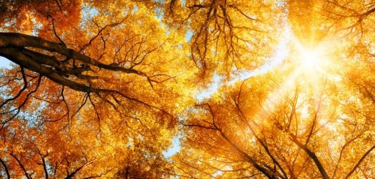 Herbst im Chiemgau